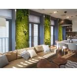 Вертикальное озеленение; главные плюсы и преимущества с фото