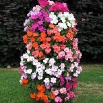 Башня Цветов – оригинальные вертикальные сады из цветов