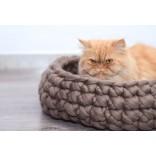 Дизайнерские лежанки для капризных кошек