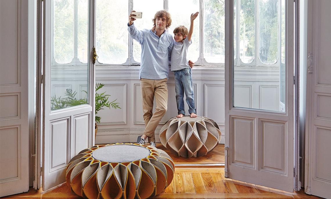 пуфы-для-современных залов-ерш-pouf.jpg